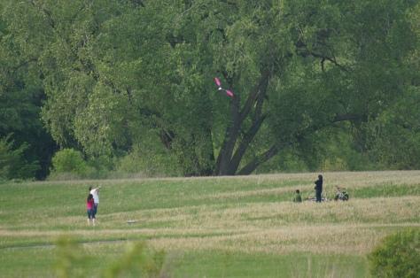Familt Flying Kite