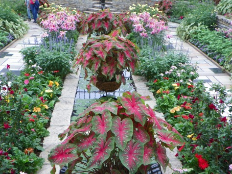 Sunken Garden at Como