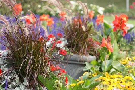 Floral Scenew